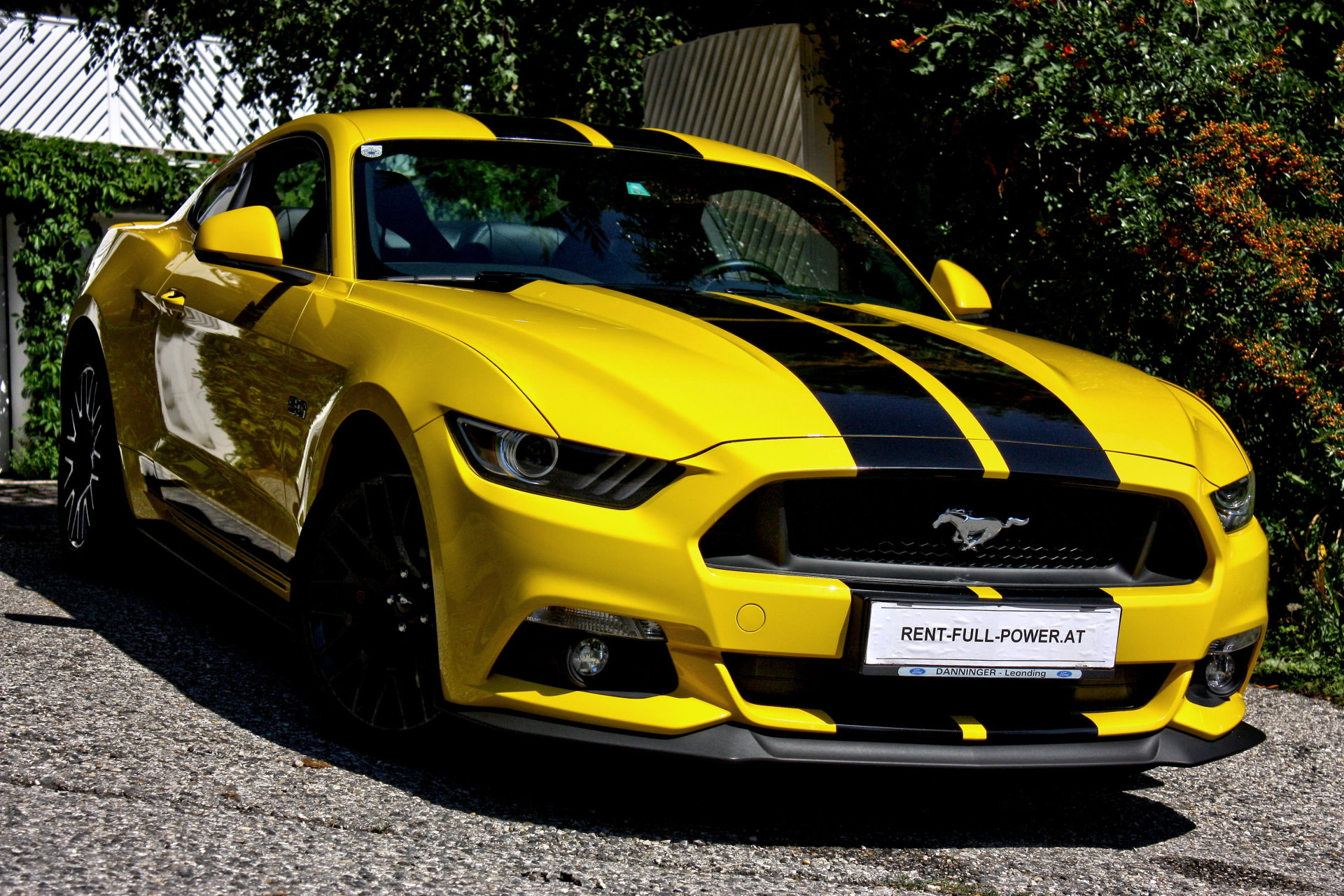 Ford Mustang Gt Gen on 2015 Ford Mustang