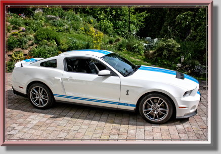 Ford Mustang GT 5.0 Shelby mieten