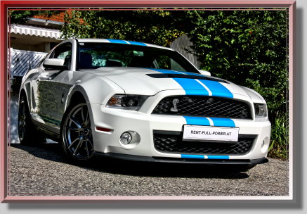 Ford Mustang GT 5.0 Shelby Clone mieten